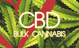 CBD cannabis light bulk